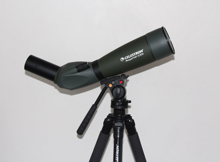 Angled-Spotting-Scope